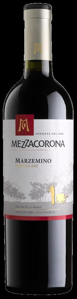 Marzemino - I CLASSICI