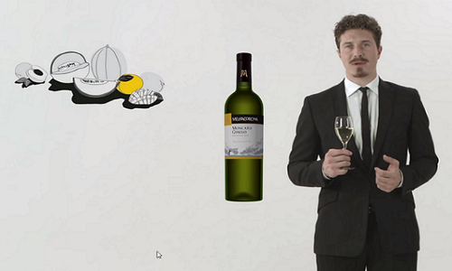 Moscato GIallo Video(0).png