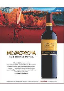 mezzacorona_TEROLDEGO_2013_zoom_G1327.jpg