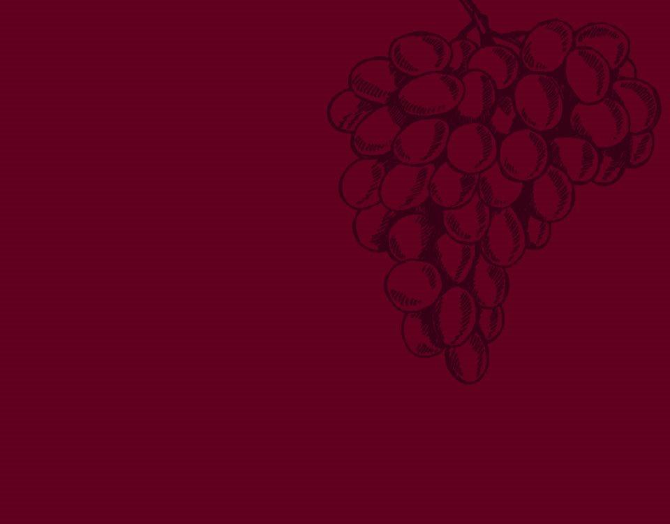 wine-archive-teroldego__01b